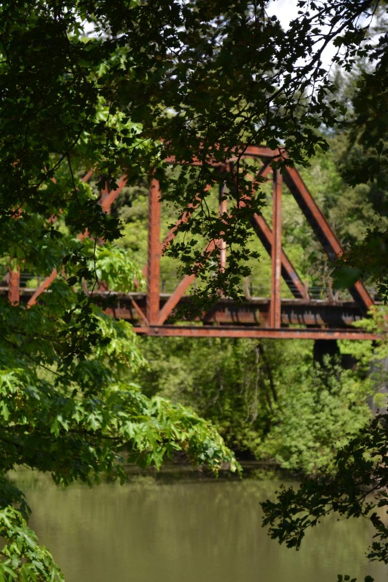55/365 - bridges